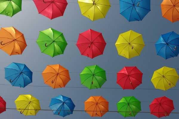 Regen of paraplu?